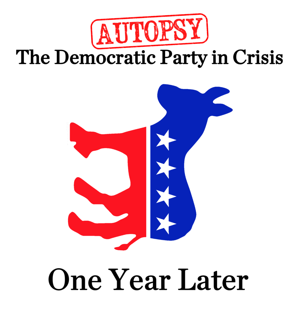 Democratic Autopsy One Year Later